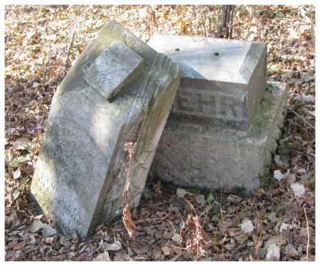 LUEHR, HENRIETTA - Dakota County, Nebraska   HENRIETTA LUEHR - Nebraska Gravestone Photos
