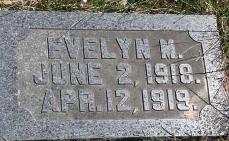 LUESEBRINK, EVELYN M. - Dakota County, Nebraska | EVELYN M. LUESEBRINK - Nebraska Gravestone Photos