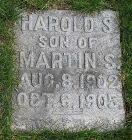 MANSFIELD, HAROLD S. - Dakota County, Nebraska | HAROLD S. MANSFIELD - Nebraska Gravestone Photos