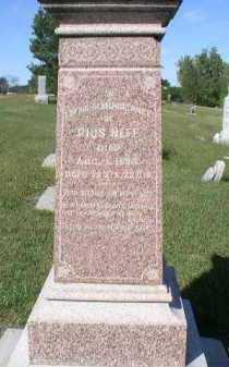NEFF, MARY - Dakota County, Nebraska | MARY NEFF - Nebraska Gravestone Photos