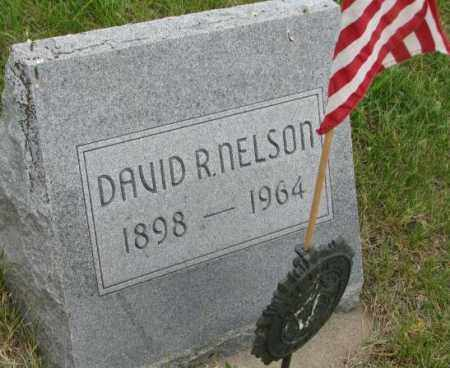 NELSON, DAVID R. - Dakota County, Nebraska | DAVID R. NELSON - Nebraska Gravestone Photos
