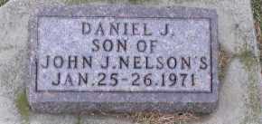 NELSON, DANIEL J. - Dakota County, Nebraska   DANIEL J. NELSON - Nebraska Gravestone Photos