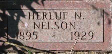 NELSON, HERLUF N. - Dakota County, Nebraska | HERLUF N. NELSON - Nebraska Gravestone Photos