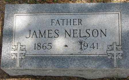 NELSON, JAMES - Dakota County, Nebraska | JAMES NELSON - Nebraska Gravestone Photos