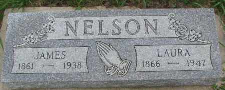 NELSON, LAURA - Dakota County, Nebraska | LAURA NELSON - Nebraska Gravestone Photos