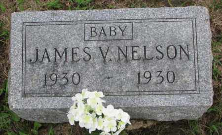 NELSON, JAMES V. - Dakota County, Nebraska | JAMES V. NELSON - Nebraska Gravestone Photos
