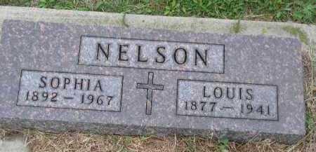NELSON, LOUIS - Dakota County, Nebraska | LOUIS NELSON - Nebraska Gravestone Photos