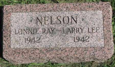 NELSON, LARRY LEE - Dakota County, Nebraska | LARRY LEE NELSON - Nebraska Gravestone Photos