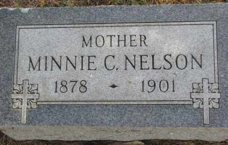 NELSON, MINNIE C. - Dakota County, Nebraska | MINNIE C. NELSON - Nebraska Gravestone Photos
