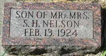 NELSON, SON - Dakota County, Nebraska | SON NELSON - Nebraska Gravestone Photos