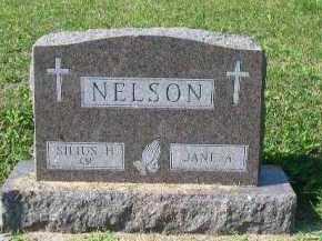 NELSON, SILIUS (CY) - Dakota County, Nebraska | SILIUS (CY) NELSON - Nebraska Gravestone Photos