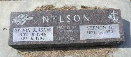 NELSON, VERNON G. - Dakota County, Nebraska   VERNON G. NELSON - Nebraska Gravestone Photos
