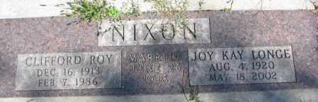 LONGE NIXON, JOY KAY - Dakota County, Nebraska | JOY KAY LONGE NIXON - Nebraska Gravestone Photos