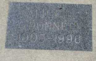 O'DONNELL, ALICE D. - Dakota County, Nebraska | ALICE D. O'DONNELL - Nebraska Gravestone Photos