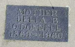 O'DONNELL, DELIA B. - Dakota County, Nebraska   DELIA B. O'DONNELL - Nebraska Gravestone Photos