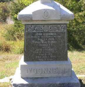 O'DONNELL, BRIDGET - Dakota County, Nebraska | BRIDGET O'DONNELL - Nebraska Gravestone Photos