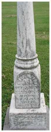 PARSONS, WILLIE WALDO ? - Dakota County, Nebraska | WILLIE WALDO ? PARSONS - Nebraska Gravestone Photos