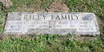 RILEY, CATHERINE - Dakota County, Nebraska   CATHERINE RILEY - Nebraska Gravestone Photos