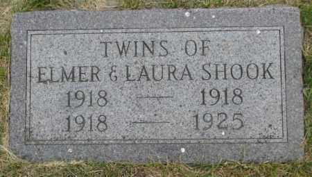 SHOOK, TWINS - Dakota County, Nebraska | TWINS SHOOK - Nebraska Gravestone Photos