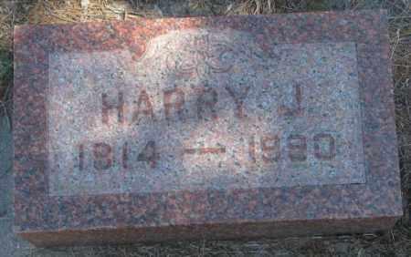 SKOW, HARRY J. - Dakota County, Nebraska   HARRY J. SKOW - Nebraska Gravestone Photos