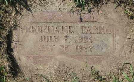 TARNO, FERDINAND - Dakota County, Nebraska | FERDINAND TARNO - Nebraska Gravestone Photos