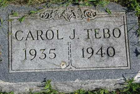 TEBO, CAROL J. - Dakota County, Nebraska | CAROL J. TEBO - Nebraska Gravestone Photos