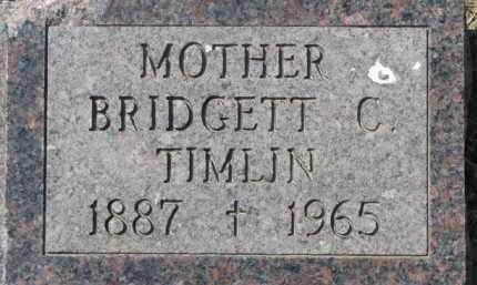 TIMLIN, BRIDGETT C. - Dakota County, Nebraska | BRIDGETT C. TIMLIN - Nebraska Gravestone Photos