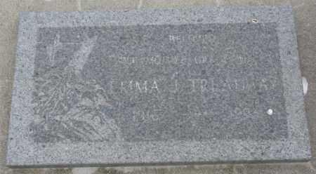 TREADWAY, EMMA J. - Dakota County, Nebraska   EMMA J. TREADWAY - Nebraska Gravestone Photos