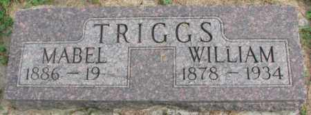 TRIGGS, WILLIAM - Dakota County, Nebraska | WILLIAM TRIGGS - Nebraska Gravestone Photos