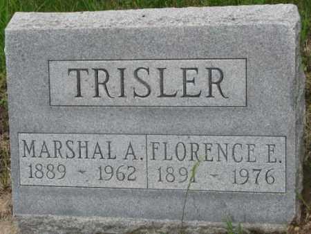 TRISLER, FLORENCE E. - Dakota County, Nebraska   FLORENCE E. TRISLER - Nebraska Gravestone Photos