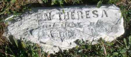TWOHIG, THERESA - Dakota County, Nebraska | THERESA TWOHIG - Nebraska Gravestone Photos