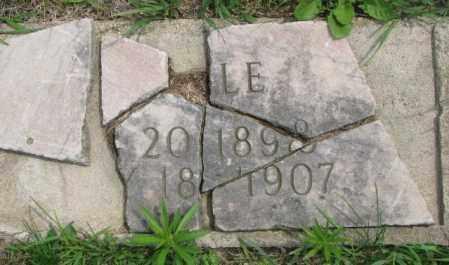 UNKNOWN, --LE - Dakota County, Nebraska | --LE UNKNOWN - Nebraska Gravestone Photos