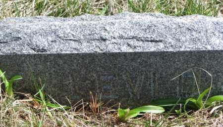UNKNOWN, LEVI D. - Dakota County, Nebraska   LEVI D. UNKNOWN - Nebraska Gravestone Photos