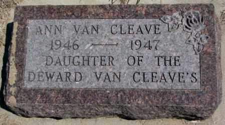 VAN CLEAVE, ANN - Dakota County, Nebraska | ANN VAN CLEAVE - Nebraska Gravestone Photos