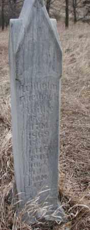 WILKE, WILHELM FRIEDRICH - Dakota County, Nebraska | WILHELM FRIEDRICH WILKE - Nebraska Gravestone Photos