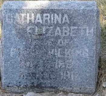 WILKINS, CATHARINA ELIZABETH - Dakota County, Nebraska   CATHARINA ELIZABETH WILKINS - Nebraska Gravestone Photos