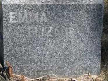 WILKINS, EMMA ELIZABETH - Dakota County, Nebraska | EMMA ELIZABETH WILKINS - Nebraska Gravestone Photos