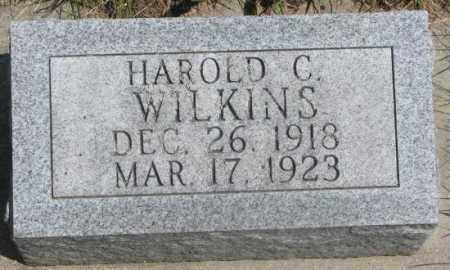 WILKINS, HAROLD C. - Dakota County, Nebraska | HAROLD C. WILKINS - Nebraska Gravestone Photos