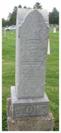 WILLIAMS, JOHN - Dakota County, Nebraska   JOHN WILLIAMS - Nebraska Gravestone Photos