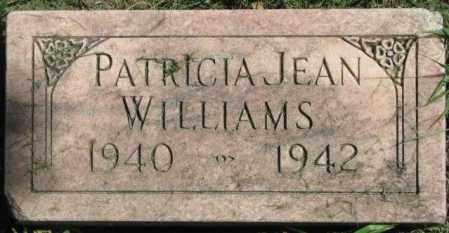 WILLIAMS, PATRICIA JEAN - Dakota County, Nebraska   PATRICIA JEAN WILLIAMS - Nebraska Gravestone Photos