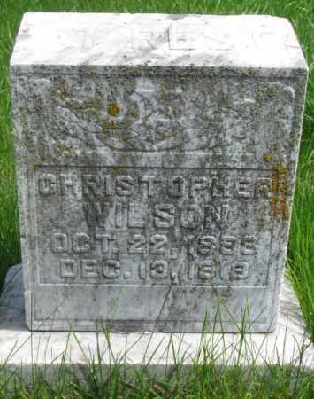 WILSON, CHRISTOPHER - Dakota County, Nebraska | CHRISTOPHER WILSON - Nebraska Gravestone Photos