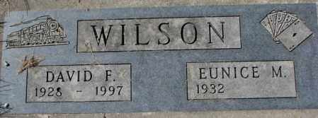 WILSON, DAVID F. - Dakota County, Nebraska | DAVID F. WILSON - Nebraska Gravestone Photos