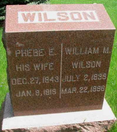 WILSON, WILLIAM M. - Dakota County, Nebraska | WILLIAM M. WILSON - Nebraska Gravestone Photos