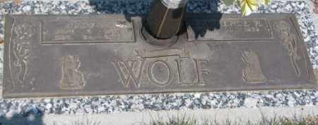 WOLF, JUDY M. - Dakota County, Nebraska | JUDY M. WOLF - Nebraska Gravestone Photos