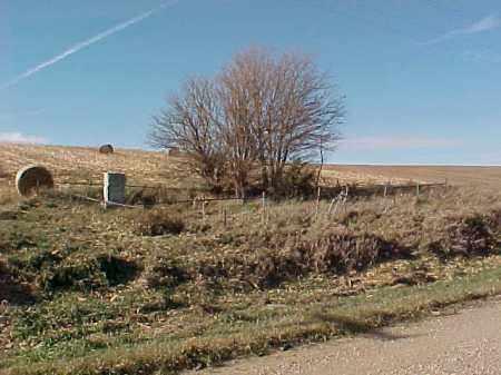 *WOODS, ROADSIDE - Dakota County, Nebraska   ROADSIDE *WOODS - Nebraska Gravestone Photos
