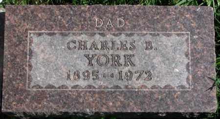 YORK, CHARLES B. - Dakota County, Nebraska | CHARLES B. YORK - Nebraska Gravestone Photos