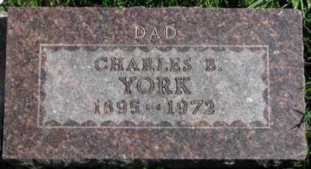 YORK, CHARLES B. - Dakota County, Nebraska | CHARLES B. YORK - Nebraska Gravestone Photos