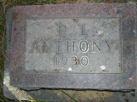 ANTHONY, D. L. - Dawes County, Nebraska | D. L. ANTHONY - Nebraska Gravestone Photos