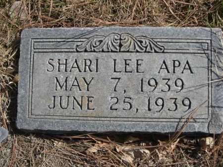 APA, SHARI LEE - Dawes County, Nebraska | SHARI LEE APA - Nebraska Gravestone Photos