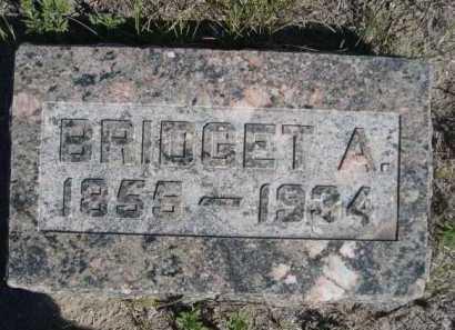BANNAN, BRIDGET A. - Dawes County, Nebraska | BRIDGET A. BANNAN - Nebraska Gravestone Photos